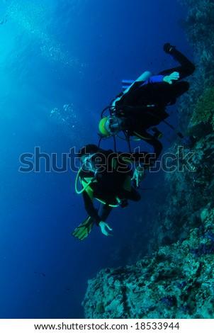 Dive buddies #18533944