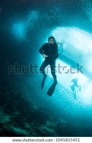 Diver and Sardine Run in Moalboal. Cebu, Philippines #1045815451