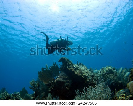 Diver descending on a Cayman Island Reef shot from below