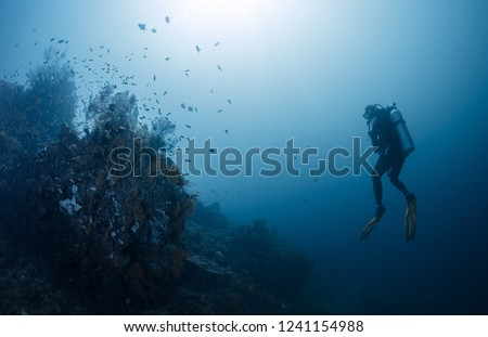 Diver in the ocean, Amed, Bali #1241154988