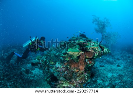 Diver is swimming and taking picture in Gili, Lombok, Nusa Tenggara Barat, Indonesia underwater photo. there is also sea fan. #220297714
