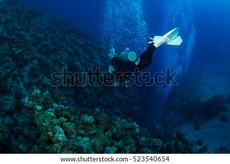 Diver on the reaf of Red sea #523540654