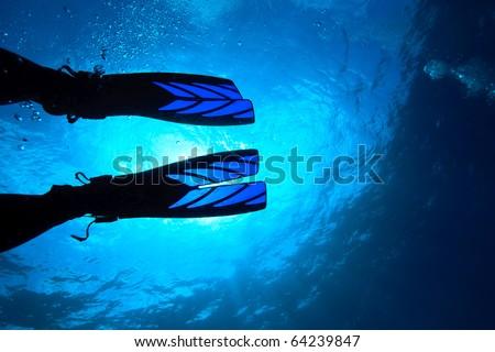Diver's fin