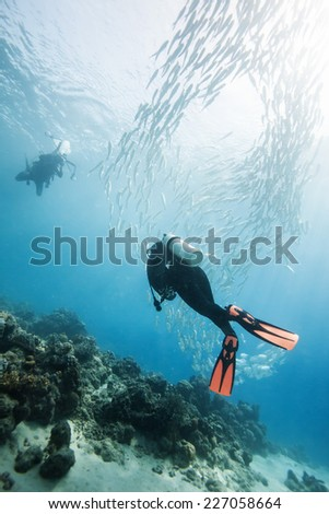 diver swimming in fish school in Dimakya island, Palawan, Philippines. #227058664