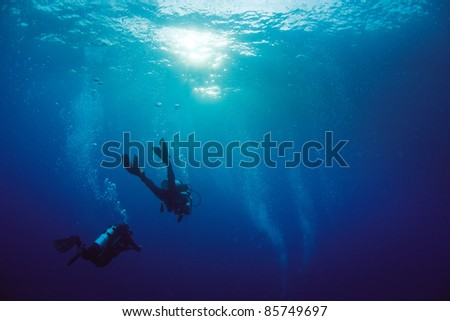 Diver swimming near surface