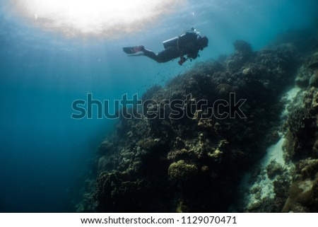Diver taking in the beautiful surroundings of the Ocean hit by the Sun #1129070471