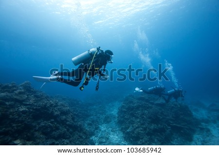 diver under the sea - stock photo