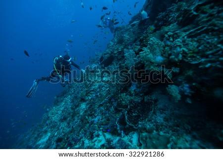 diver underwater #322921286