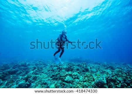 Diver Underwater #418474330