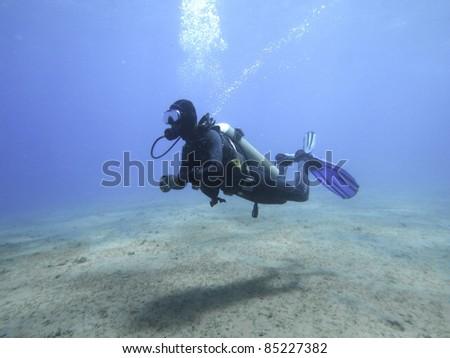diver underwater #85227382
