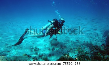 diver underwater. diving. water sports #755924986