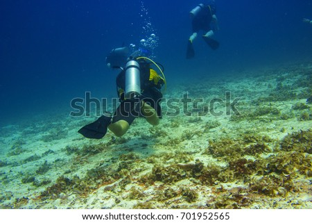 divers with aqualungs slowly floating near the bottom in the Andaman sea #701952565