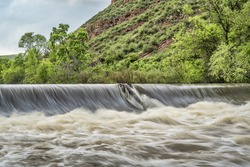 diversion dam taking water from river for farmland irrigation; Cache la Poudre River near Fort Collins, Colorado, springtime with high water flow