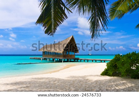 Diving club on a tropical island, travel background