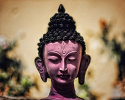 Divinity In Buddha is the photograph of an idol of Lord Buddha at my home.