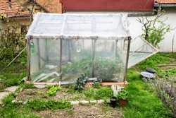 DIY green house, home made greenhouse made of wooden frame and nylon  sheets