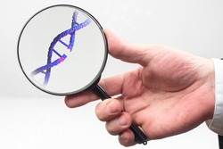 DNA disease concept. A break in genome molecule like sivol DNA disease. Genome molecule under a magnifying glass. Hand with a magnifying glass on a white background. DNA disease in genetics