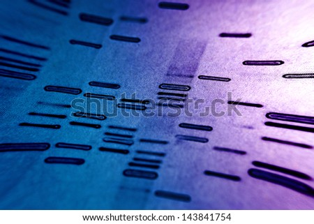 Dna Fingerprint Wallpaper Dna Fingerprints Pincushion