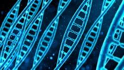 DNA molecule macro, blue string on screen, biological research, genes