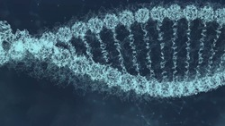 DNA molecule on ditigal blue background. Genetics concept. Animation of DNA construction. DNA molecule For visuals, biology, biotechnology, medical dashboard. DNA futuristic footage