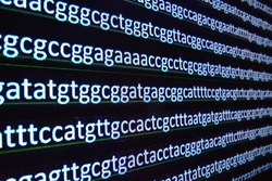 DNA Sequencing. Explanation genome, the nucleotide sequence of the nucleic acid.