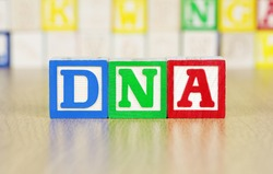 DNA Spelled Out in Alphabet Building Blocks