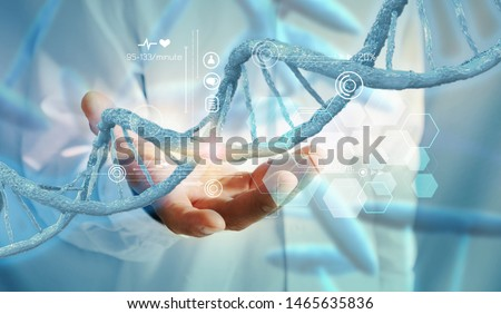 DNA structure interface. DNA strands