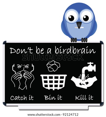 Do not be a birdbrain flu prevention message