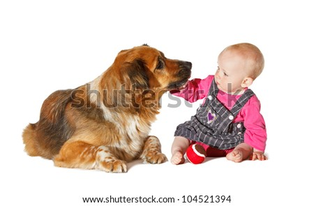 Do not kiss me... 9 Months old Baby and Dog playing on white background