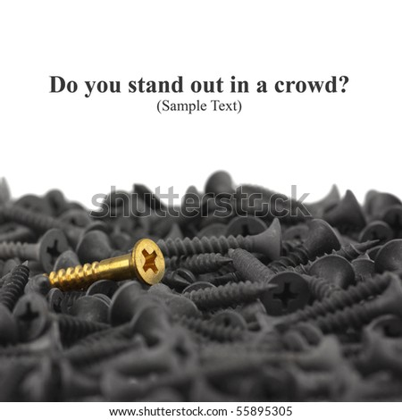 Do You Stand Out In A Crowd?  Macro of one brass screw in a pile of black screws isolated on white with copy space. Shallow DOF. - stock photo