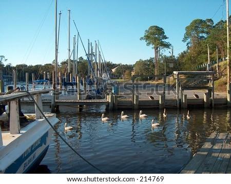 Dock on the Mississippi coast line