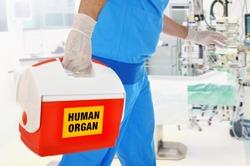 Doctor brings organ donation for organ transplantation in op of hospital