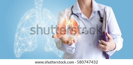 Doctor shows human lungs.