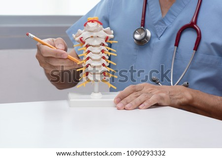 Doctor using pencil to demonstrate anatomy of artificial human cervical spine model in medical office