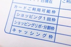 Documents in Japanese. Translation: As of 11th, usage, card usage amount, one-time shopping amount, shopping revolving, splitting amount, cashing amount.