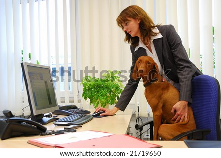 dog and business woman together in the office