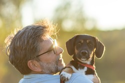 Dog and his owner - Cool mixed breed dog and mature man having fun in a park - Concepts of friendship, pets, togetherness. Senior Man with his dog hugging and playing outdoor in the park.