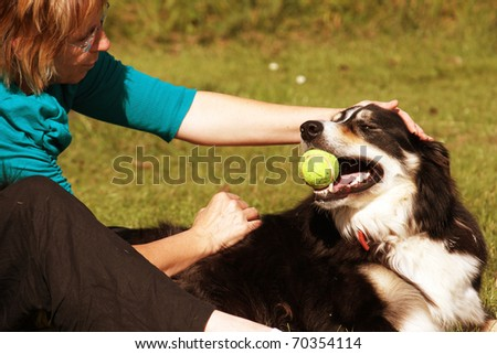 Dog and owner playing in the park