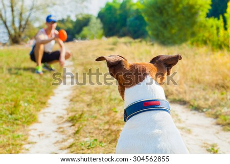 dog and owner playing with ball , toy or disc outdoors, dog is waiting and ready to play