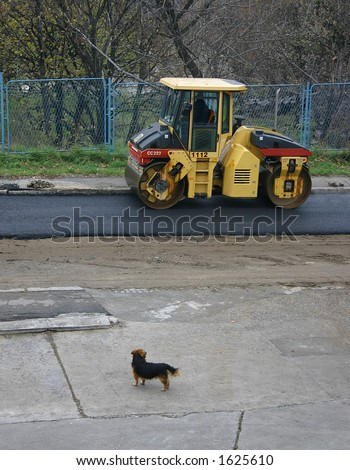 Dog and roller