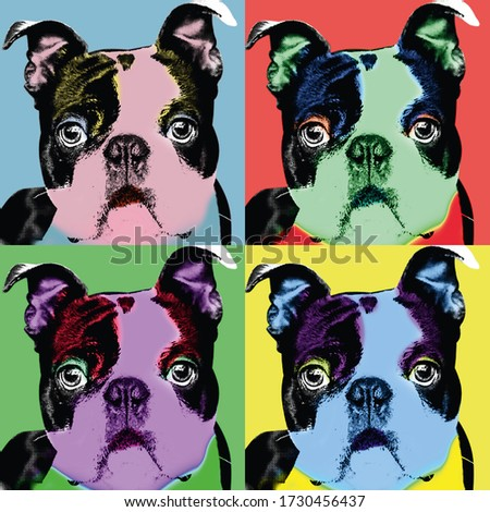 Dog art pictures, Andy Warhol, Pop art photo, Photo art, Boston terrier photo, Cartoon dog pictures, Funny dog pics, Silly dog photo, Sweet doggie photos, Doggy pics, Doggy image, Doggie pic