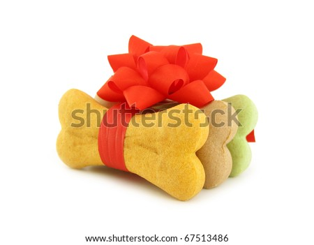 Dog biscuits bone shaped wrapped as gift