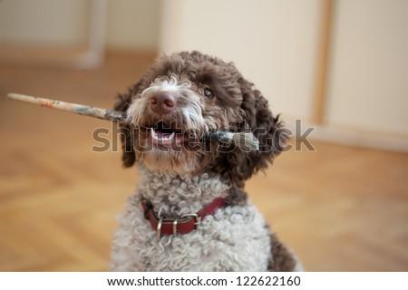 dog biting paint brush