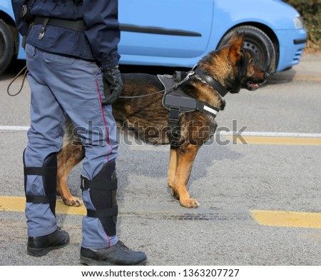 Dog Canine Unit of the police to identify the explosives during an anti-terrorist operation #1363207727
