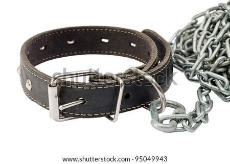 Dog collar with a chain isolated on a white background