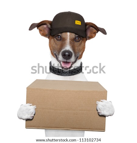 dog delivery post box