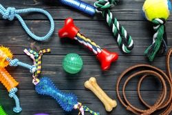 Dog feeding and care concept background. Pet care and training concept. Toys, balls, bones, collar, leash for playing and training