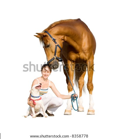 dog, girl and horse