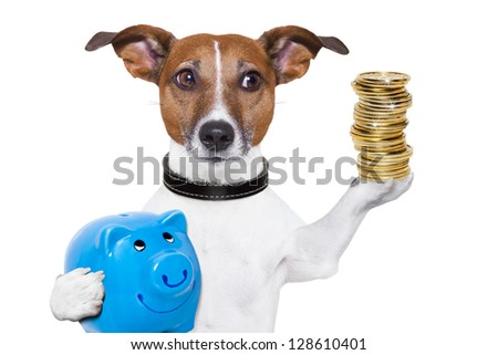 dog holding a  blue piggy bank and a stack of coins
