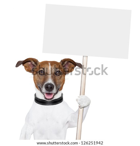 dog holding an empty placard and licking empty placard and smiling Сток-фото ©